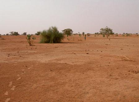 Sahel : Une patrouille de la gendarmerie tombe dans une embuscade