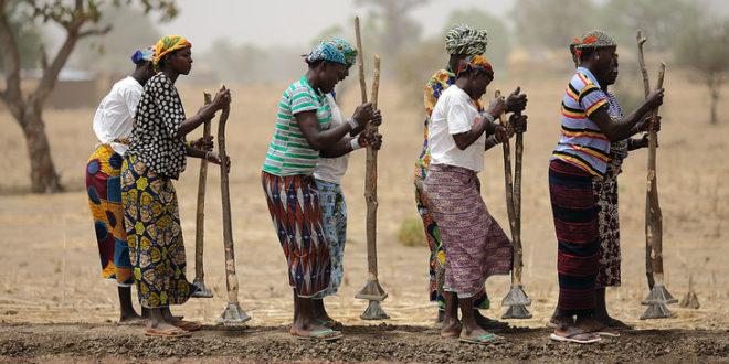 Burkina Faso: L'incompréhensible combat pour la libération de la femme à travers le vote de la loi sur un quota genre